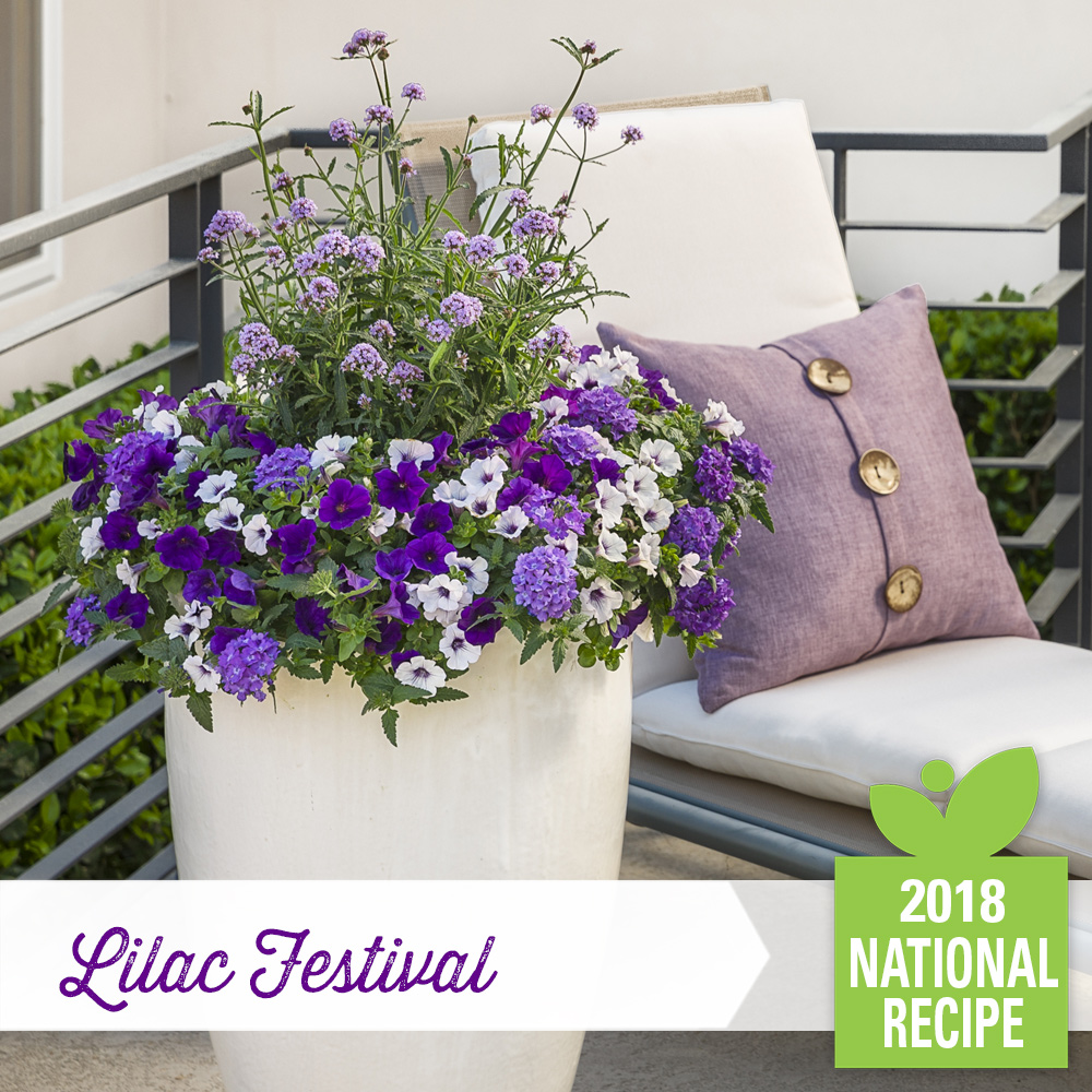 National Recipe Lilac Festival Facebook